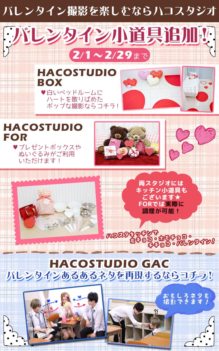 haco_VD